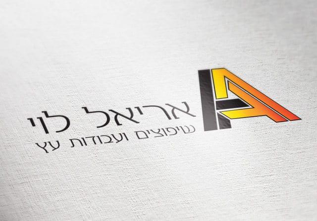 קמפיין אריאל לוי 2